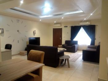 Furnished and Serviced 2 Bedroom Flat with Generator and Ac, Off Ibb Way, Maitama District, Abuja, Flat for Rent
