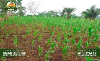 Plots of Land., Mowe Ofada, Ogun, Commercial Land for Sale