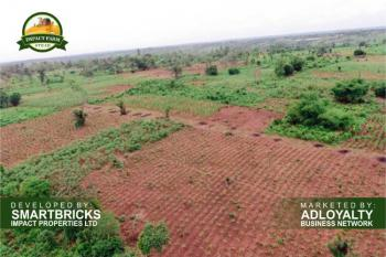 Farm Land Now Available with Free Seedlings, Develoments, Clearings, Mokoloki, Impact Farm Stead, Mowe Ofada, Ogun, Commercial Land for Sale