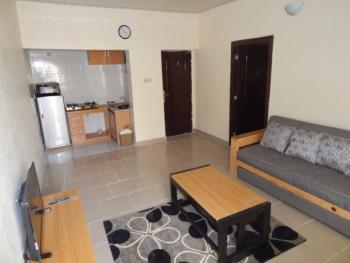 Furnished Mini Flat, Lekki Garden, Sangotedo, Ajah, Lagos, Flat Short Let
