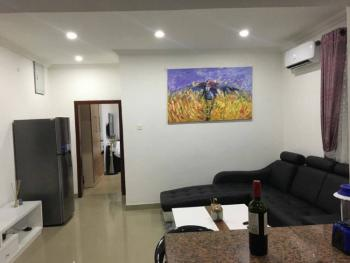 Fully Furnished and Serviced Mini Flat (1 Bedroom Apartment), U3 Estate, Lekki, Lagos, Self Contained (single Rooms) Short Let