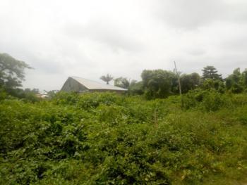 Mixed Use Strategic 20 Acres of Land Near Civilization, Olorisa Oko Village Off Ibadan-isheyin Expressway, Moniya, Ibadan, Oyo, Mixed-use Land for Sale