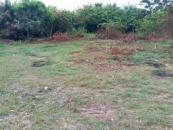Half Plot of Dry Land with Genuine Document, Before Adron Homes Estate, Emuren Town Imota, Along Ijebu Ode Road, Ikorodu, Lagos, Mixed-use Land for Sale