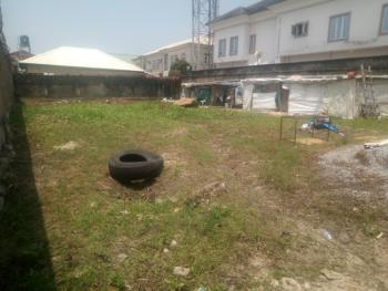 Dry Bear Land Gated and Fenced, Off Freedom Way, Ikate, Lekki, Lagos, Mixed-use Land for Sale