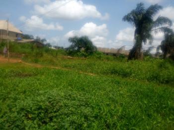 Expansive 8 1/2 Plots of Land., Oke Afa, Isolo, Lagos, Mixed-use Land for Sale