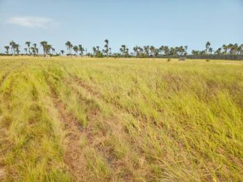 100% Dry Land in The Next Great Hub of Africa, Ode Omi, After La Campagne Tropicana Beach Resorts, Pinnacle Horizon, Akodo Ise, Ibeju Lekki, Lagos, Mixed-use Land for Sale