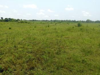 120 Acres of Land, Odo Ogun Town Along Iseyin Awaye Road., Iseyin, Oyo, Commercial Land for Sale
