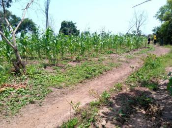 100 Acres., Idi Ori Village Along Oyo Iseyin Road., Iseyin, Oyo, Commercial Land for Sale