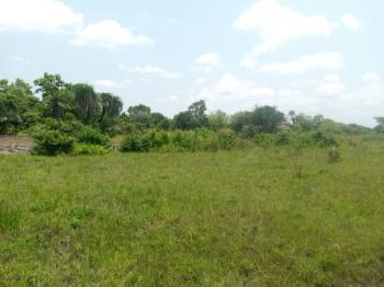 15 Acres ., Aba Corner Village Along Iseyin Ibadan Road., Iseyin, Oyo, Commercial Land for Sale