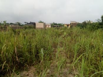 Full Dry Plot of Land., Along Magbon Road (oke Glo), Kara Kekere, Pakuro, Obafemi Owode, Ogun, Mixed-use Land for Sale