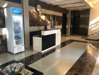 Standard Fully Furnished and Serviced Apartment, Rumens Road, Old Ikoyi, Ikoyi, Lagos, Mini Flat Short Let