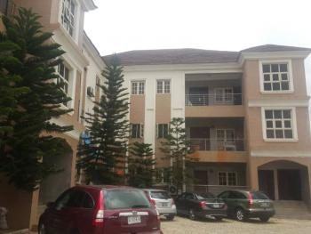 Newly Built and Well Finished Spacious 3 Bedroom Serviced Flat with Bq, Jabi, Abuja, Flat for Rent