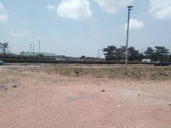 2 Plots Together Facing Express Available for Commercial Purpose, Oshodi Expressway, Iyana Oworo, Oworonshoki, Kosofe, Lagos, Commercial Land for Sale