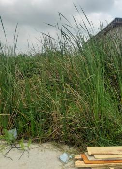 Genuine Semi Dry Land in a Fast Developing Location, After Novare Mall, Sangotedo, Ajah, Lagos, Residential Land for Sale