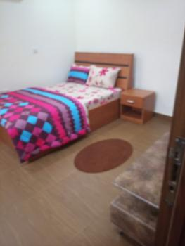 Luxury Self Contained Apartment, Wuye, Abuja, House Short Let