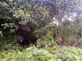 11000sqm Land Facing Express with C of O, Asese, Ibafo, Ogun, Mixed-use Land for Sale