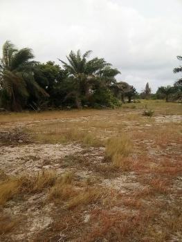 100% Dry and Genuine Land, Behind Free Trade Zone, Orimedu, Ibeju Lekki, Lagos, Residential Land for Sale