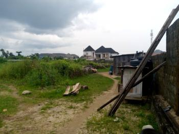 12 Plots of Lands, Chinda By New Road Mile4 Inside Town, Obio-akpor, Rivers, Mixed-use Land for Sale