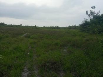 Affordable 100% Dry Land, Surrounded By Deep Seaport, Swan Park, Asegun, Ibeju Lekki, Lagos, Mixed-use Land for Sale