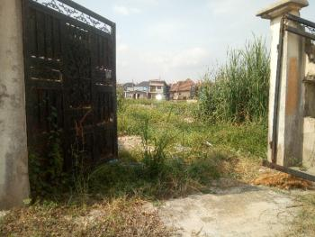 Well Located and Regular Land Measuring 717square Metre, Soluyi, Gbagada, Lagos, Residential Land for Sale