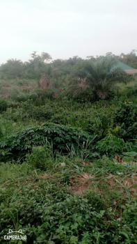 Very Standard Corner Piece Plot of Land, Oghoetuoma Close Off Owukori Crescent, Alaka, Surulere, Lagos, Residential Land for Sale