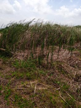 Land, Landmark Is Oando Fuel Station, Gwarinpa, Abuja, Residential Land for Sale