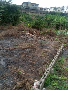 Land in a Secured Location, River Valley Estate, Ojodu, Lagos, Residential Land for Sale