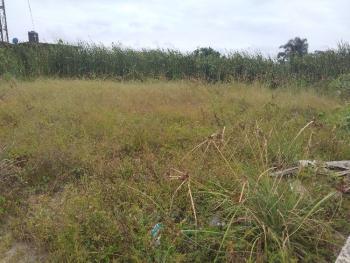 Distressed Very Nice Half Plot of Land, Hopeville Estate, Sangotedo, Ajah, Lagos, Land for Sale