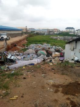 a Mega Commercial Land Suitable for Commercial Purposes, Along Apapa Oshodi Express Way, Ijesha, Lagos, Mixed-use Land for Sale