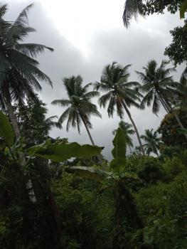 500 Plots of Land, Yenagoa, Bayelsa, Mixed-use Land for Sale