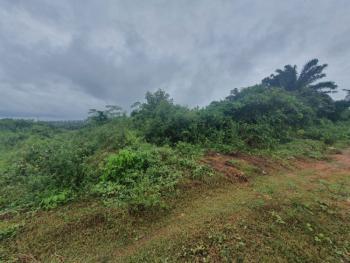 200 By 200 Plot of Land, Okhuoromi, Irhirhi Road, Off Airport Road, Benin, Oredo, Edo, Mixed-use Land for Sale