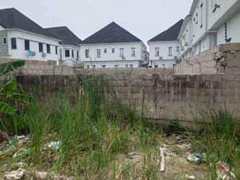 700sqm, Dry and Fenced Round, Orchid Road, Ikota, Lekki, Lagos, Residential Land Joint Venture