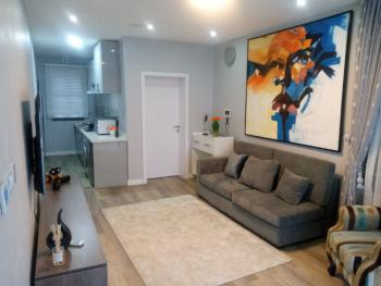 Luxuriously Finished  1 Bedroom Apartment, Urban Prime 1 Estate,off Abraham Adesanya, Ogombo, Ajah, Lagos, Flat for Sale