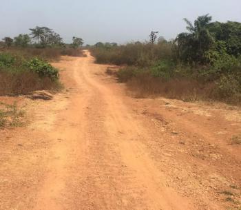 Commercial Land, Royelx Military Gardens Karishi Nasarawa A45 Efab Mail, Area 1, Garki, Abuja, Commercial Land for Sale