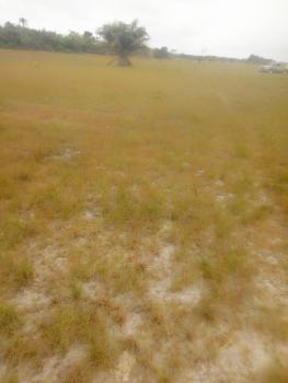 100% Dry Land, Swan Park, Asegun, Ibeju Lekki, Lagos, Mixed-use Land for Sale