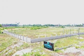 Executive Residential Land, Livewell Estate, Ogogoro, Ibeju Lekki, Lagos, Mixed-use Land for Sale