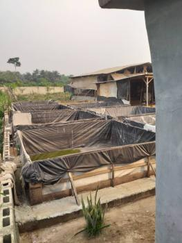 Functioning Fish Farmland with Housing Block in a Develop Location, Erunwen, Ikorodu, Lagos, Mixed-use Land for Sale