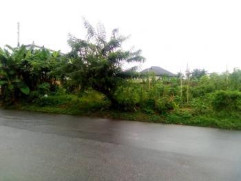 1000 Sqm Plots, Ewet Housing Estate, Uyo, Akwa Ibom, Mixed-use Land for Sale
