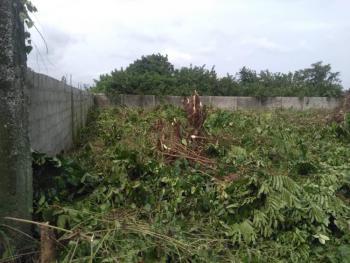 1219sqm of Fenced Land with Gazette, Alatise, Ibeju Lekki, Lagos, Residential Land for Sale