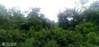 Nicely Located Land, Company Road, Biase, Cross River, Commercial Land for Sale