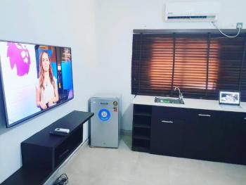 Mini Fllat, Dolphin Estate, Old Ikoyi, Ikoyi, Lagos, Mini Flat Short Let