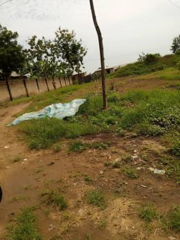 8 Plots of Land for Poultry/farming with Constant Electricity, Behind Ewekoro, Ewekoro, Ogun, Commercial Property for Sale