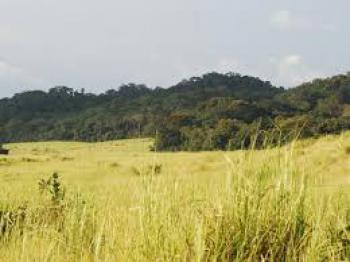 8000m2 Fully Fenced  Land, Along Water Corporation Rd Oniru Contiguous to Queens Park Events Cent, Lagos Island, Lagos, Land for Sale