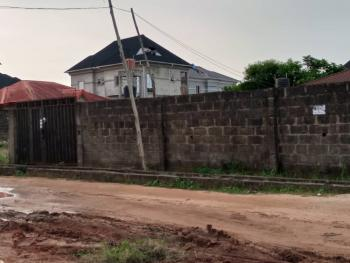 Standard 2 Bedroom Back Bungalow on 675sqm with C of O, Diamond Estate Command, Ipaja, Lagos, Detached Bungalow for Sale