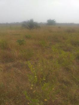 Affordable Agro Land, Oja Odan Idiroko, Alagbole, Ifo, Ogun, Mixed-use Land for Sale