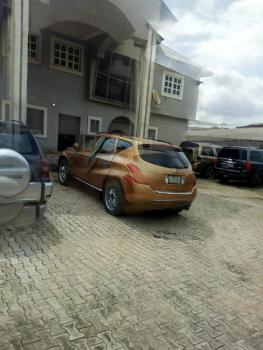 Executive 5 Bedroom Duplex with Modern Facilities, Oke Afa, Isolo, Lagos, Detached Duplex for Sale