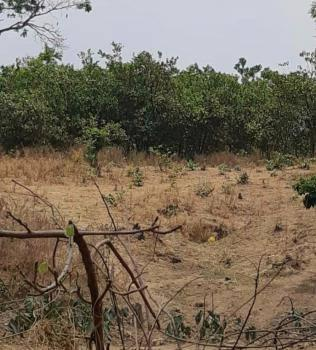 86 Hectares of Multipurpose Land., Airport Road., Kuje, Abuja, Commercial Land for Sale