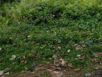 Land Measuring 700sqm with an Old Structure, Iwaya, Yaba, Lagos, Residential Land for Sale
