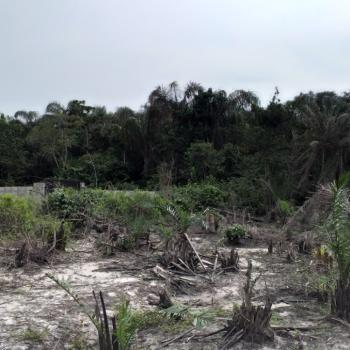 Land for Clearing Sponsorship, Agbe-ibeju Town, Developers Delight, Ibeju Lekki, Lagos, Mixed-use Land Joint Venture