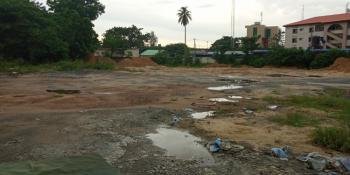 2397.08 Fenced and Gated Land, Gerrard Road, Old Ikoyi, Ikoyi, Lagos, Mixed-use Land for Sale